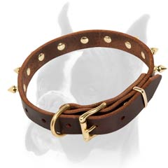 Fancy Design Leather Collar