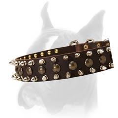 Collar with shiny Spikes & Studs