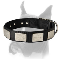 Adjustable Nylon Collar with belt buckle