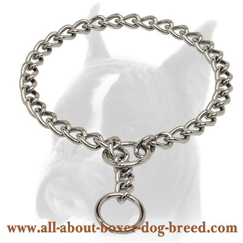 Extra durable choke chain collar for Boxer training