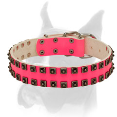 Pink leather Boxer collar with glamorous studs