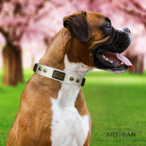 Boxer decorated natural genuine leather collar with reliable hardware