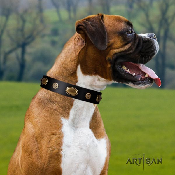 Boxer full grain natural leather collar with adornments