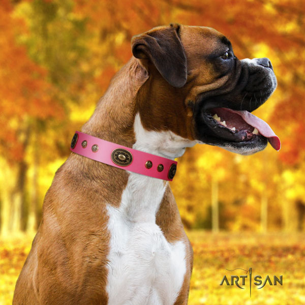 Boxer full grain genuine leather collar with corrosion proof adornments