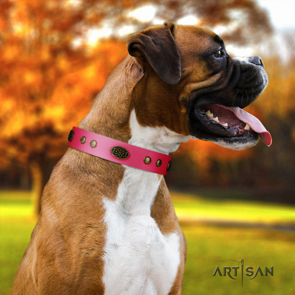 Boxer adorned leather collar with durable fittings