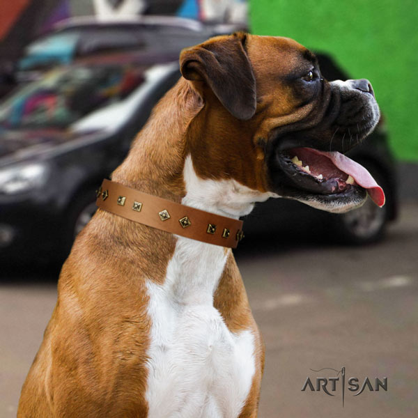 Boxer full grain genuine leather collar with corrosion proof decorations