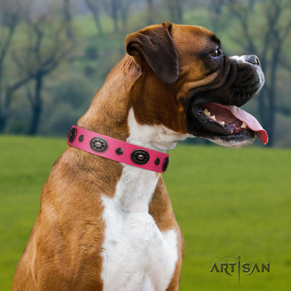 Boxer full grain natural leather collar with strong hardware