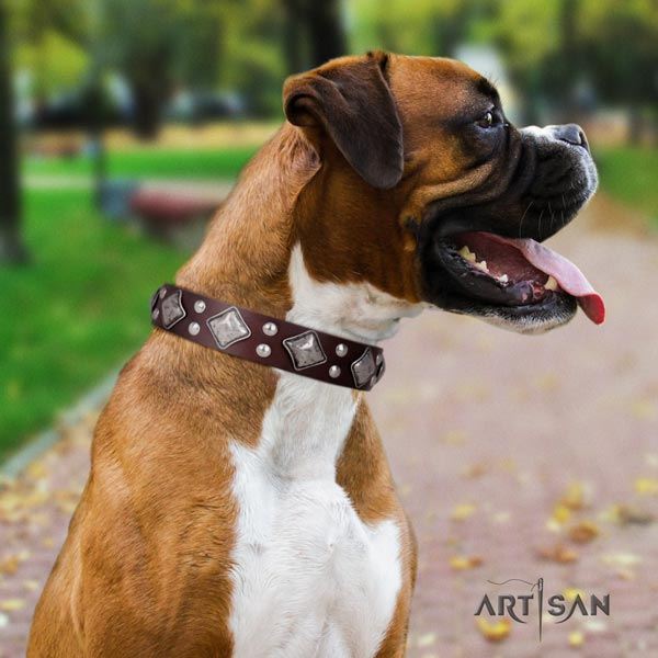 Boxer leather collar with rust-proof buckle