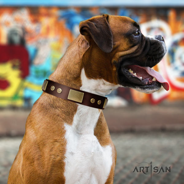 Boxer full grain genuine leather collar with rust-proof decorations