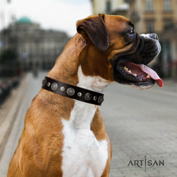 Boxer full grain leather collar with adornments
