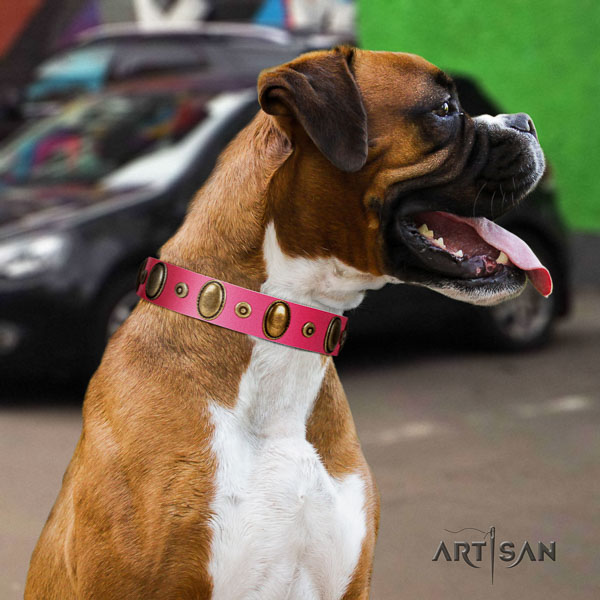 Boxer full grain natural leather collar with rust resistant D-ring for easy wearing