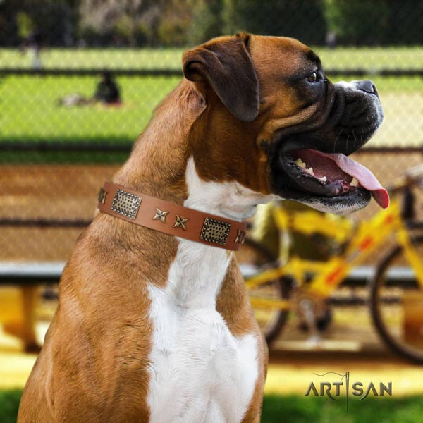 Boxer full grain leather collar with durable buckle