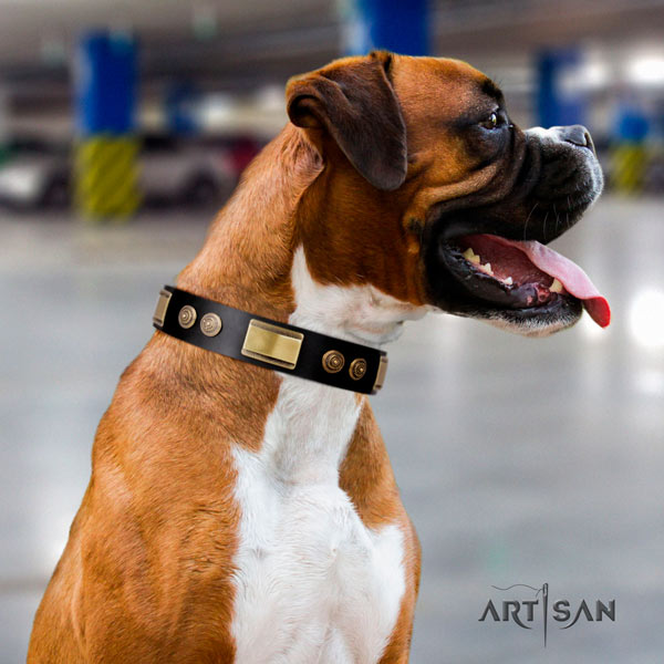 Boxer natural genuine leather collar with corrosion resistant decorations