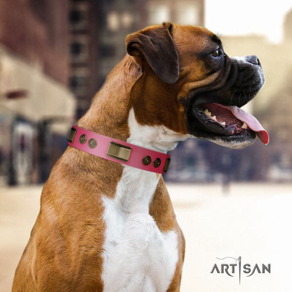 Boxer full grain genuine leather collar with rust resistant studs