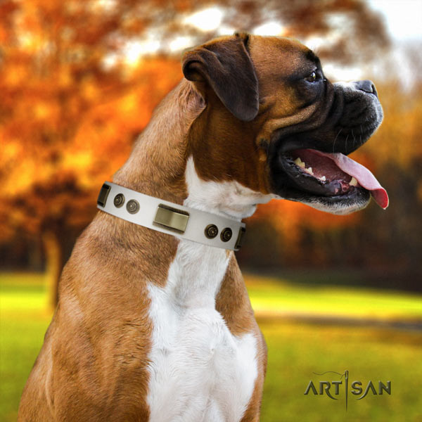 Boxer natural genuine leather collar with corrosion proof studs