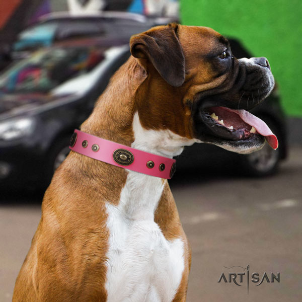 Boxer full grain genuine leather collar with corrosion proof hardware