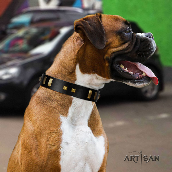 Boxer genuine leather collar with strong fittings for comfy wearing