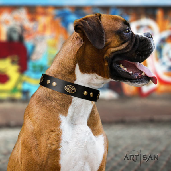 Boxer embellished genuine leather collar with rust-proof D-ring
