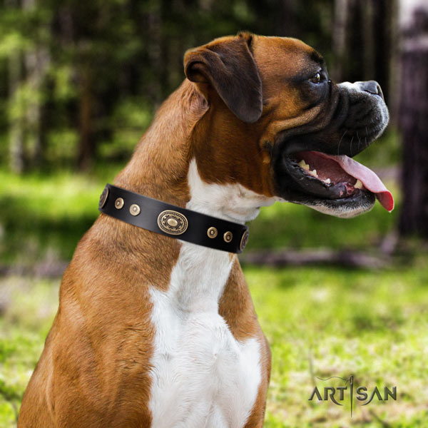 Boxer genuine leather collar with corrosion proof hardware