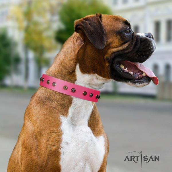 Boxer full grain genuine leather collar with strong D-ring