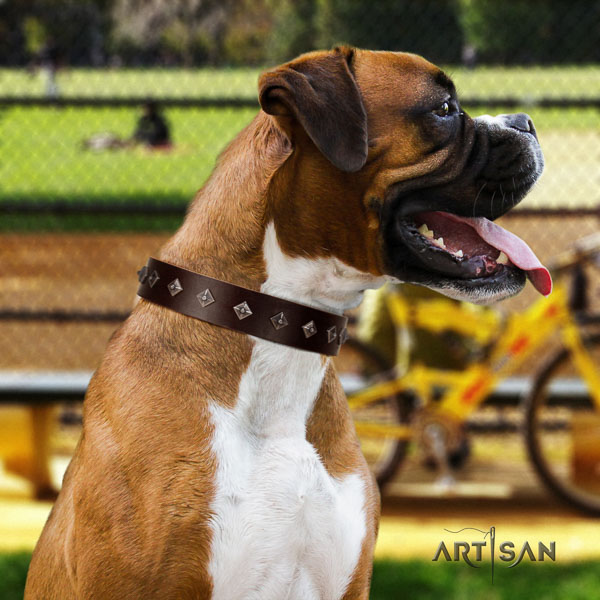 Boxer handmade natural genuine leather dog collar with embellishments