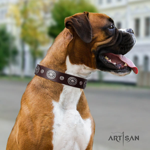 Boxer leather collar with corrosion resistant buckle