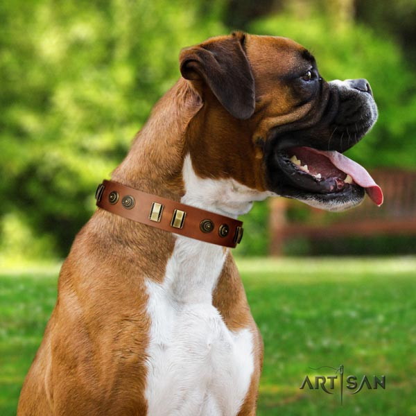 Boxer collar with adornments