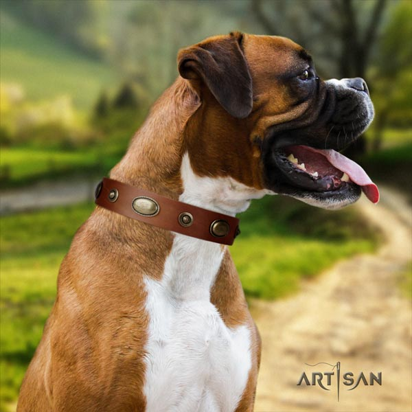 Boxer genuine leather collar with adornments