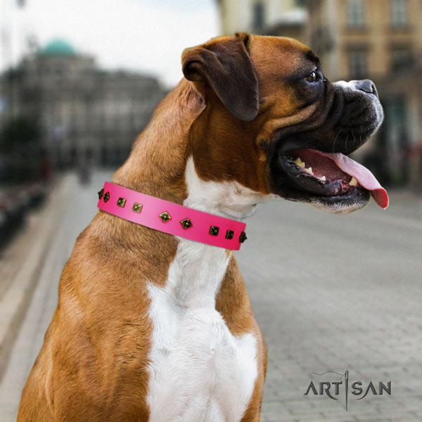 Boxer leather collar with rust resistant embellishments