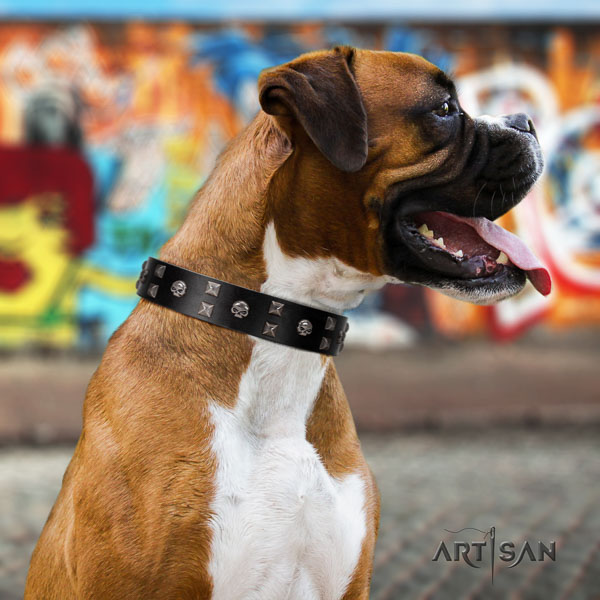 Boxer adorned full grain natural leather dog collar with decorations