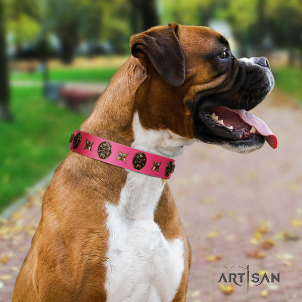 Boxer natural genuine leather collar with corrosion resistant buckle for comfortable wearing