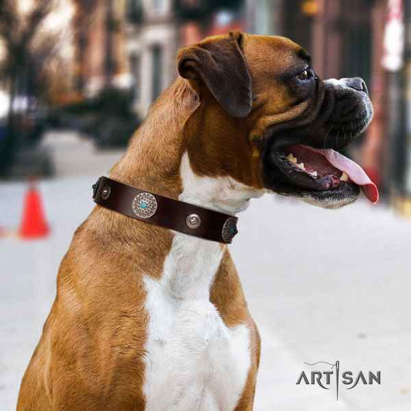 Boxer full grain leather dog collar for daily walking