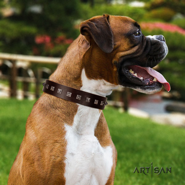 Boxer handcrafted full grain natural leather dog collar with adornments