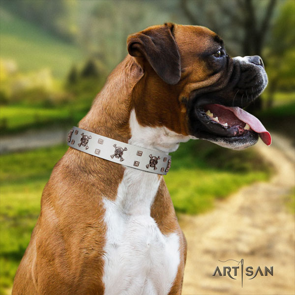 Boxer full grain leather dog collar for everyday use