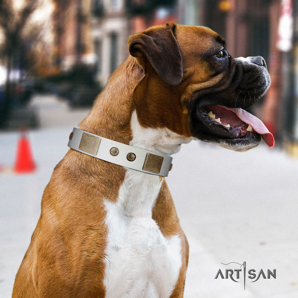 Boxer full grain natural leather collar with rust-proof hardware for comfortable wearing