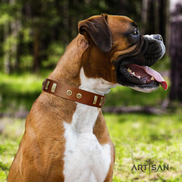 Boxer genuine leather dog collar for daily walking