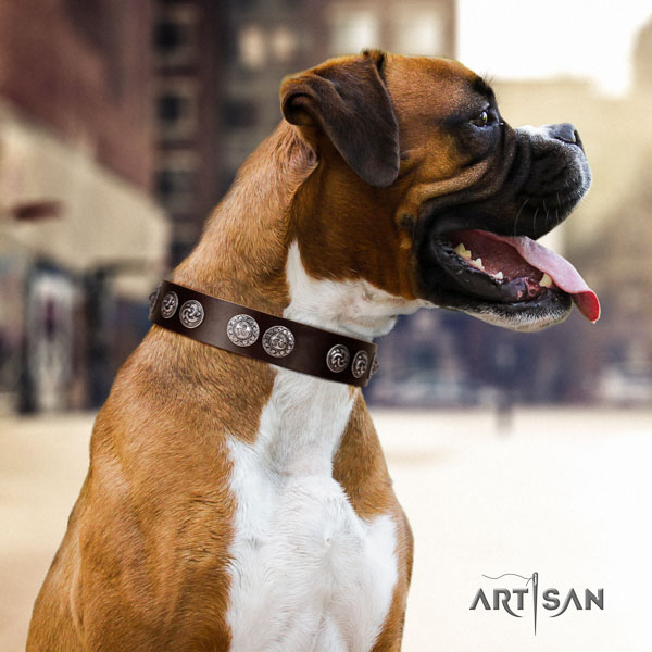 Boxer full grain natural leather dog collar for daily use