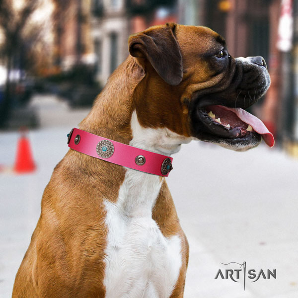 Boxer leather dog collar for walking