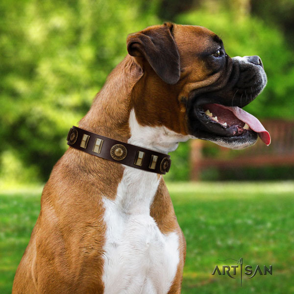 Boxer genuine leather collar with corrosion resistant fittings for walking