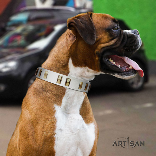 Boxer full grain genuine leather collar with corrosion proof buckle for daily walking