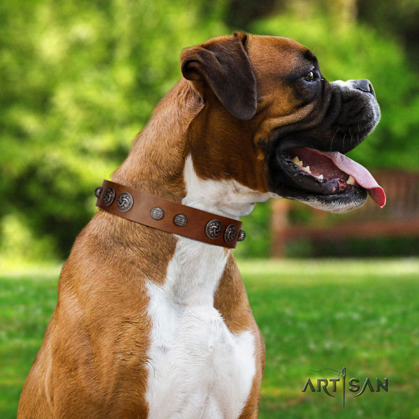 Boxer full grain natural leather dog collar for everyday use