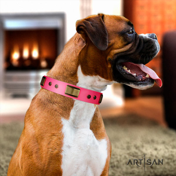 Boxer leather collar with corrosion resistant embellishments