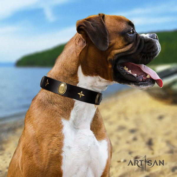 Boxer full grain natural leather dog collar for walking
