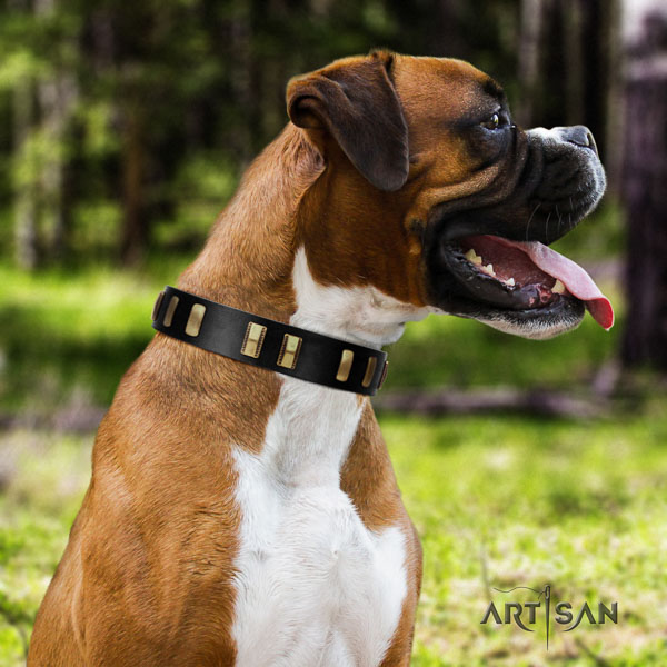 Boxer full grain leather collar with reliable buckle for handy use