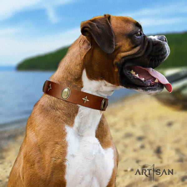 Boxer natural genuine leather dog collar for walking