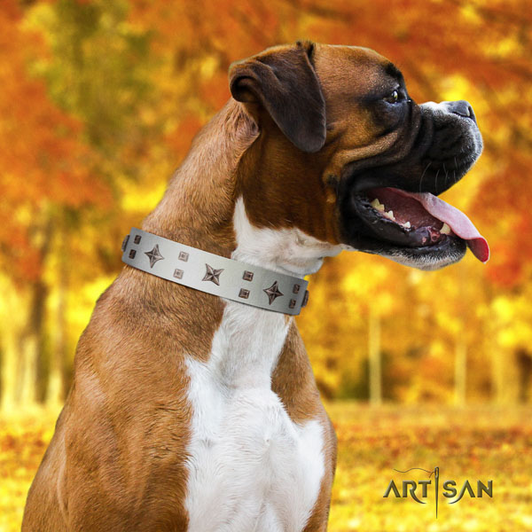 Boxer impressive leather dog collar with embellishments