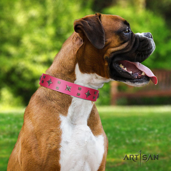 Boxer adorned full grain genuine leather dog collar with decorations