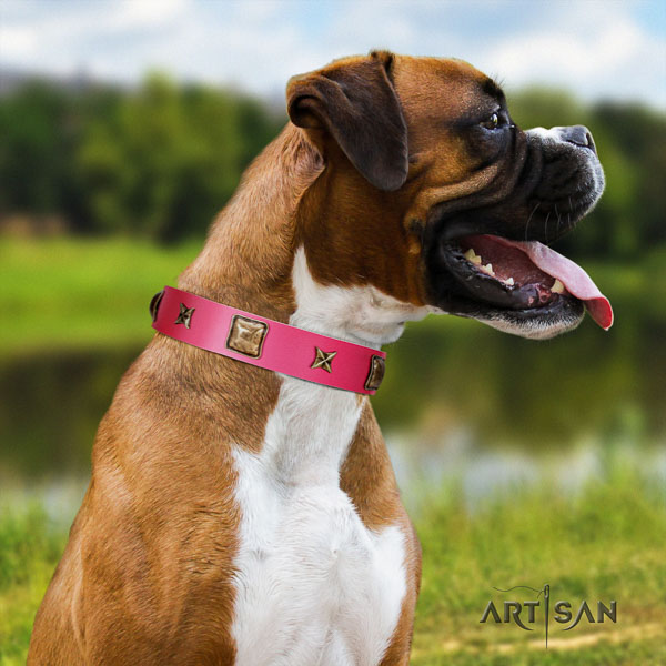 Boxer full grain natural leather collar with corrosion resistant D-ring for walking