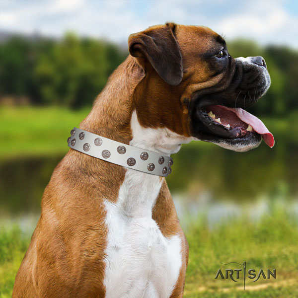 Boxer natural genuine leather dog collar for everyday use