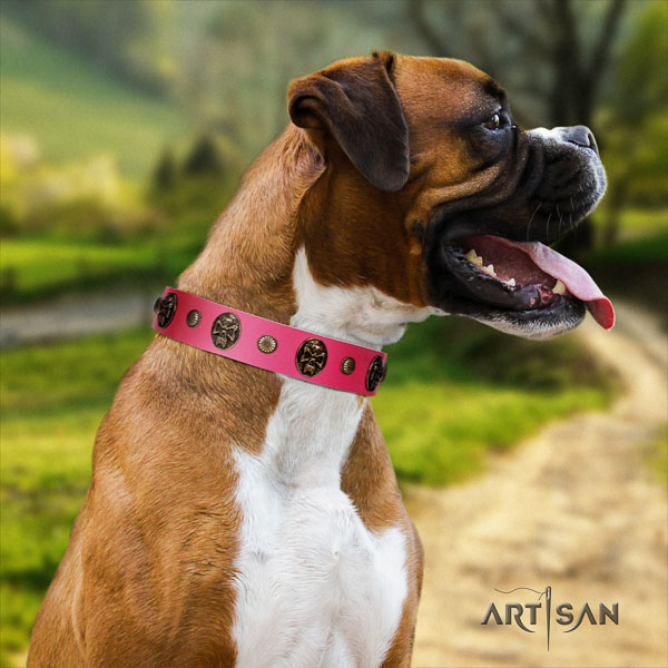 Boxer full grain natural leather collar with corrosion proof D-ring for basic training